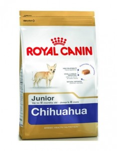 ROYAL CANIN Chihuahua sucha karma dla psa PUPPY/ JUNIOR 500 g
