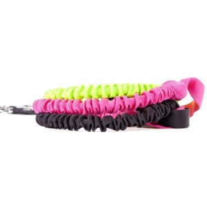 LEASH WITH SHOCK ABSORBER AND HANDLE